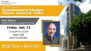 "Thumbnail of ""What Does a Brain Do?"" - Mark Nelson (Tower Talk) video"