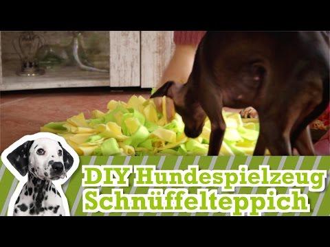 Hundespielzeug selber machen 2: Der Schnüffelteppich