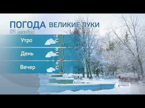 Прогноз погоды / 01.12.2020