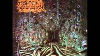 Spawn Of Possession - Hidden In Flesh