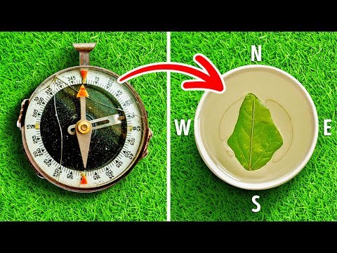 25 GENIUS CAMPING HACKS FOR COMFORT AND SURVIVAL