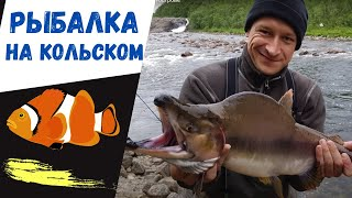 Рыбалка на кольском полуострове дикарями