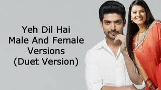 Full Version Ye Dil Hai (Duet Version) | Punar Vivah | Kritika And Gurmeet Choudary