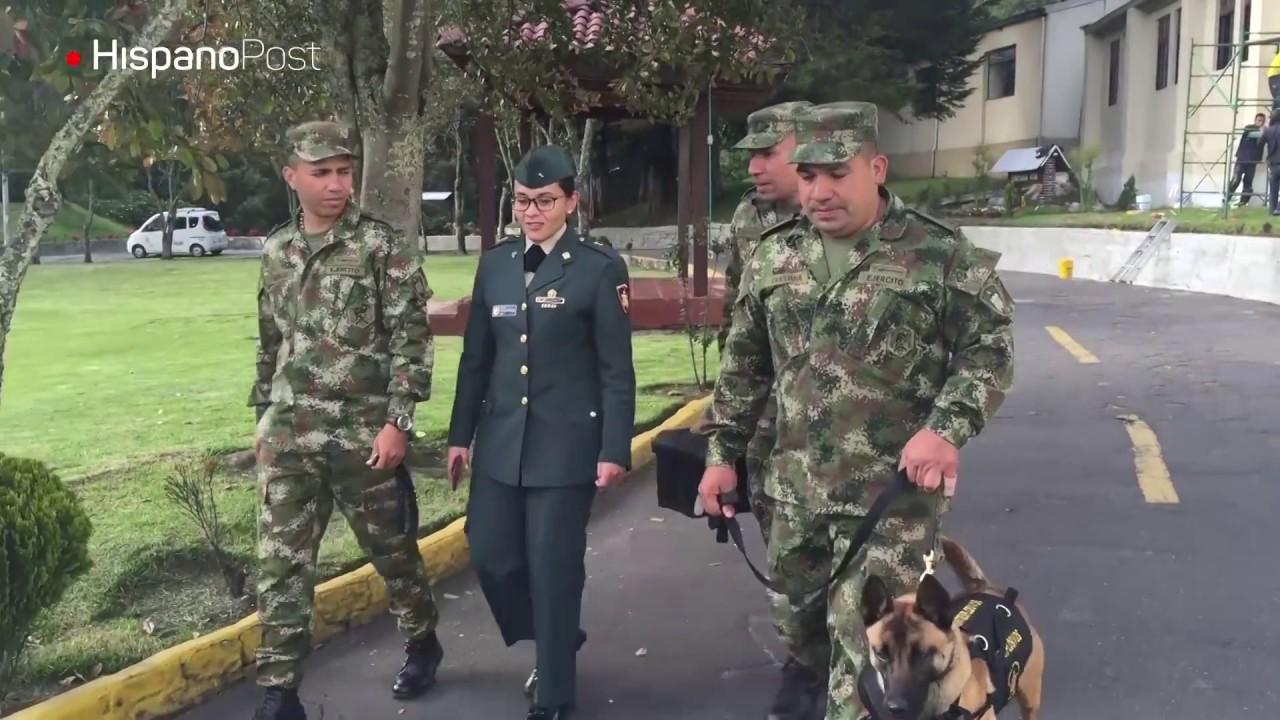 Asistimos a un entrenamiento de héroes caninos en Colombia