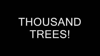 Stereophonics- A thousand trees lyrics