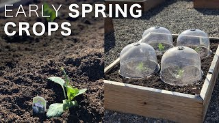 Planting a Few Early Spring Crops! 👩🌾🥦☀️// Garden Answer