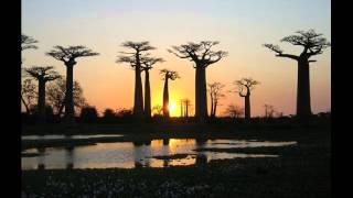 Afryka piękna i smutna