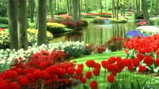 Artenovum - Dulcimers Vibes (Chillout Mix)