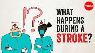 What happens during a stroke? - Vaibhav Goswami - Video Youtube