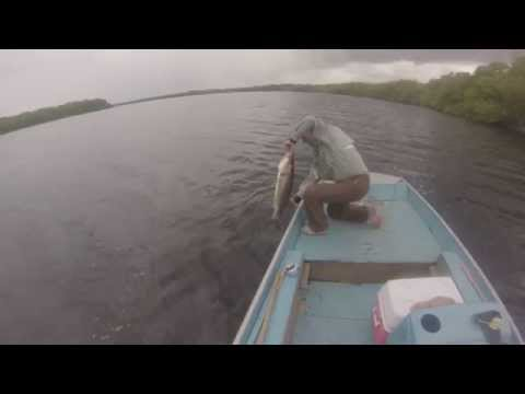 FLy FiShiNg a SnOOk iN HaTiGuAniCo RiVeR - CuBa 2013