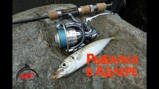 Рыбалка в адлере