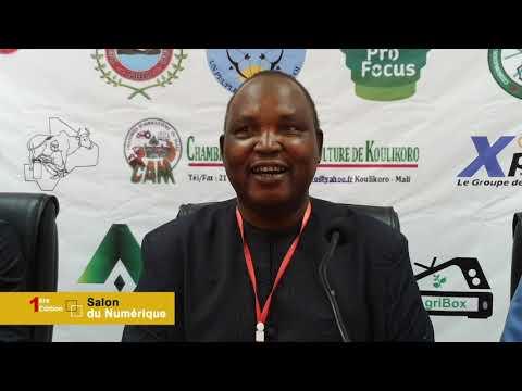 Mali , premier salon du numérique à Koulikoro