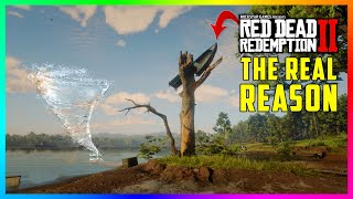The REAL Reason Why There Is A Mysterious Boat Stuck Up In A Tree In Red Dead Redemption 2! (RDR2)