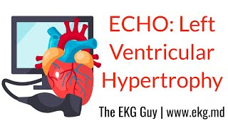 Left ventricular hypertrophy - ECHO Course l The EKG Guy video