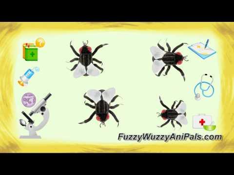 Plush Housefly Stuffed Animal