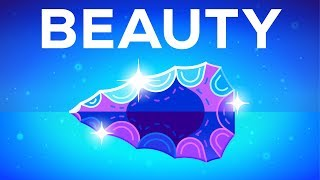 Kurzgesagt - Why Beautiful Things Make Us Happy? Beauty Explained