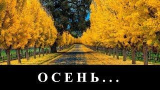 """гр. Спасение... """"Осень"""" - в городе тихая осень... (клип)"""
