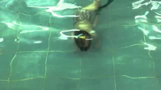 Лидия 2.5 года достала мяч. Обучение плаванию в бассейне в Минске для детей (Курсы,Секция,занятия)