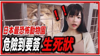 進去前要簽生死契約⚠️日本最恐怖動物園究竟長怎樣
