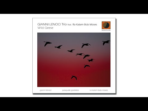GIANNI LENOCI Trio - Wild Geese (extract) - 2020 Dodicilune, Puglia Sounds Record online metal music video by GIANNI LENOCI