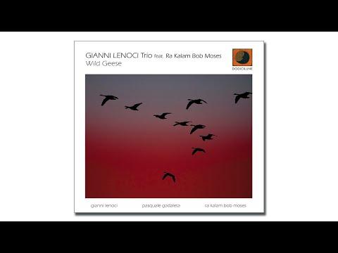 GIANNI LENOCI Trio - Wild Geese (extract) - 2020 Dodicilune, Puglia Sounds Record