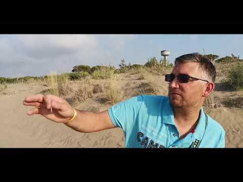STEFAN OTTO - Am Strand ohne Sohle