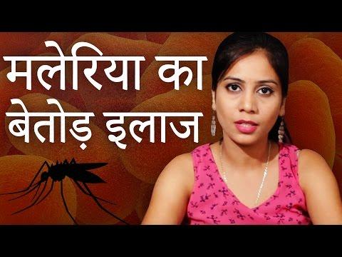 Video मलेरिया का बेतोड़ इलाज │ Malaria Ka Gharelu Ilaj │ Imam Dasta │ Malaria Cure With Home Remedies