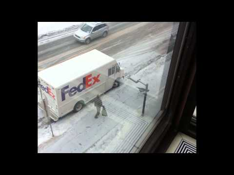 wild turkey chases delivery driver around truck