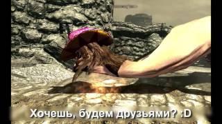 Итак, я установил несколько модов на Skyrim (Пёс Войны)