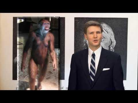 Lucy's a Chimp – David Rives