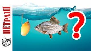 Виды всех рыболовных крючков