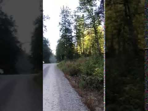 Video Of Solomon Lake Campsite, ID
