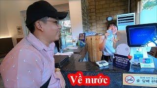 Nami Island Korean - Khoa Pug cuối cùng tìm được lòng heo về nước tổng kết chi phí làm Youtube