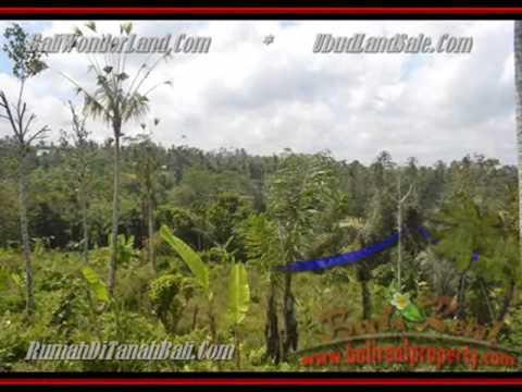 Exotic Property 9.500 m2 Lahan  View hutan sungai dan sawah di Ubud TJUB430