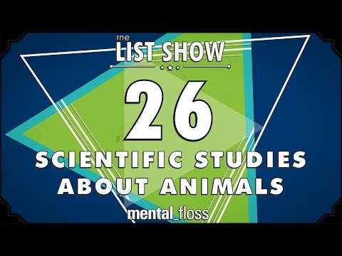 26 Scientific Studies about Animals  - mental_floss List Show Ep. 444