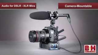 Audio for DSLR Part 2 - XLR Mics