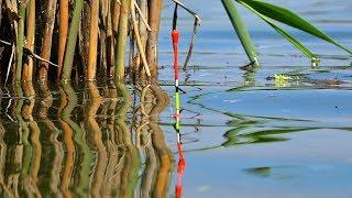 Поплавок. Зачетная ловля крупного карася на удочку поплавчанку с мормышкой!