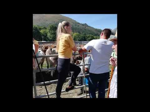 Feria Puentenansa 29092019