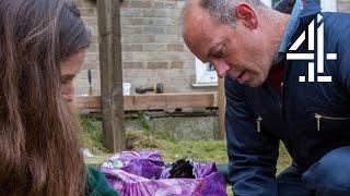 Small Garden, Big Ideas | Phil Spencer: Home Hero