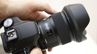 Sigma 24mm f/1.4 'ART' lens review with samples (Full-frame and APS-C)