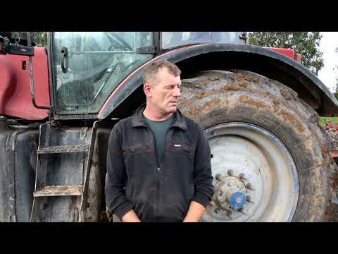 Кричевские аграрии приступили к севу озимой пшеницы