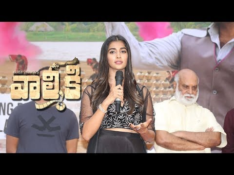 pooja-hegde-at-valmiki-team-pressmeet