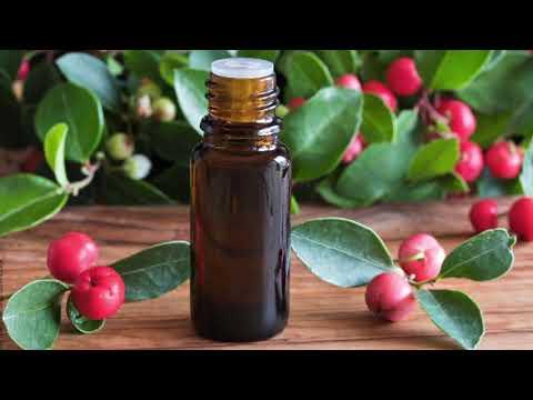 Wintergrünöl - Wie unterstützt Sie dieses ätherische Öl nach dem Sport? Und es kann noch mehr!