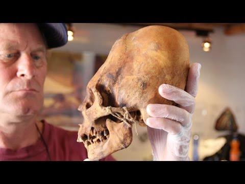 Non-Human DNA Found in Elongated Paracas Skulls