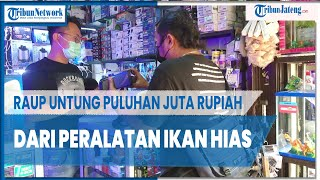 Sediakan Peralatan Ikan Hias di Pasar Depok Solo, Axl Jordan Raup Untung Puluhan Juta Rupiah