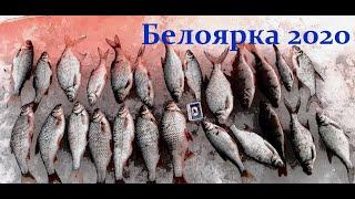 Рыбалка верхний тагил свердловской области 2020