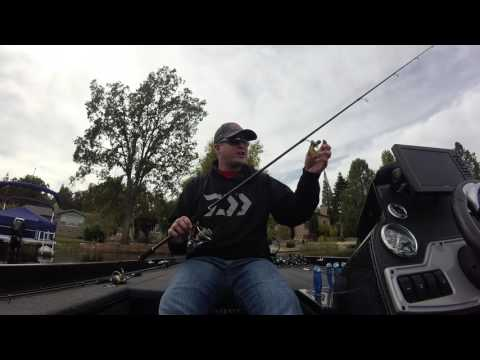 Selecting the right Daiwa Spinning Rod…