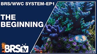 The BRS & WWC hybrid system. A simple, stable and replicable reef tank - BRStv Investigates