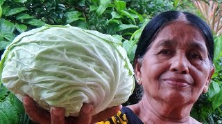 Village Foods ❤ Cabbage And Egg Stir Fry Recipe By My Mom