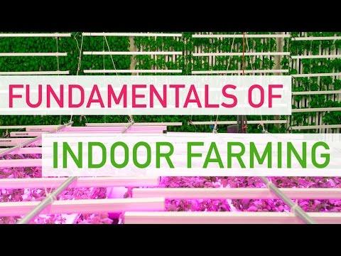 mp4 Business Plan Urban Farming, download Business Plan Urban Farming video klip Business Plan Urban Farming